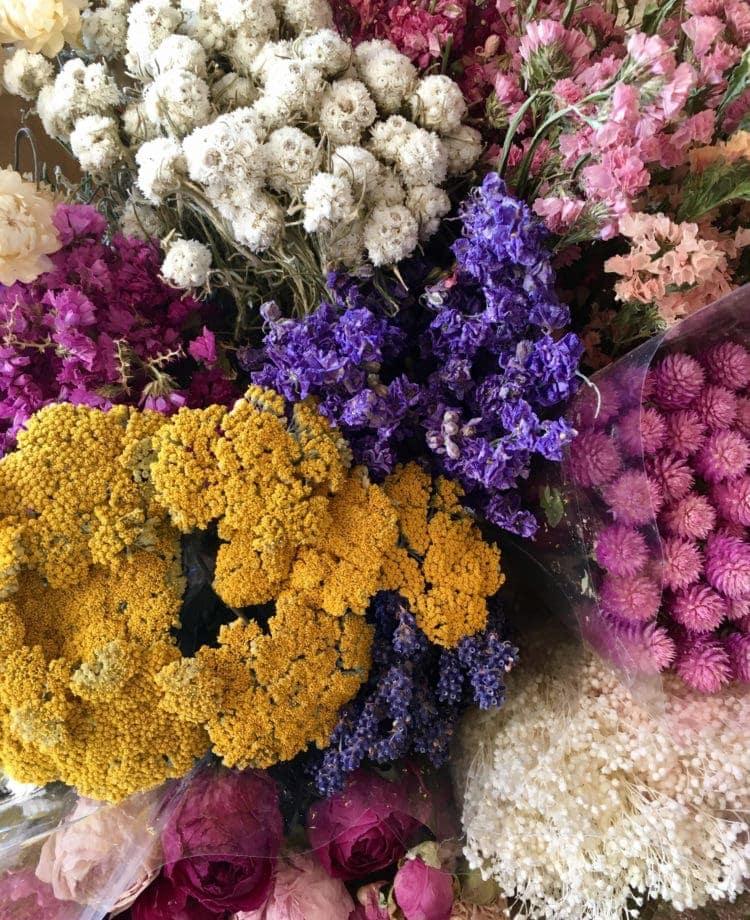 Fleurs séchées - Les Fleurs Dupont