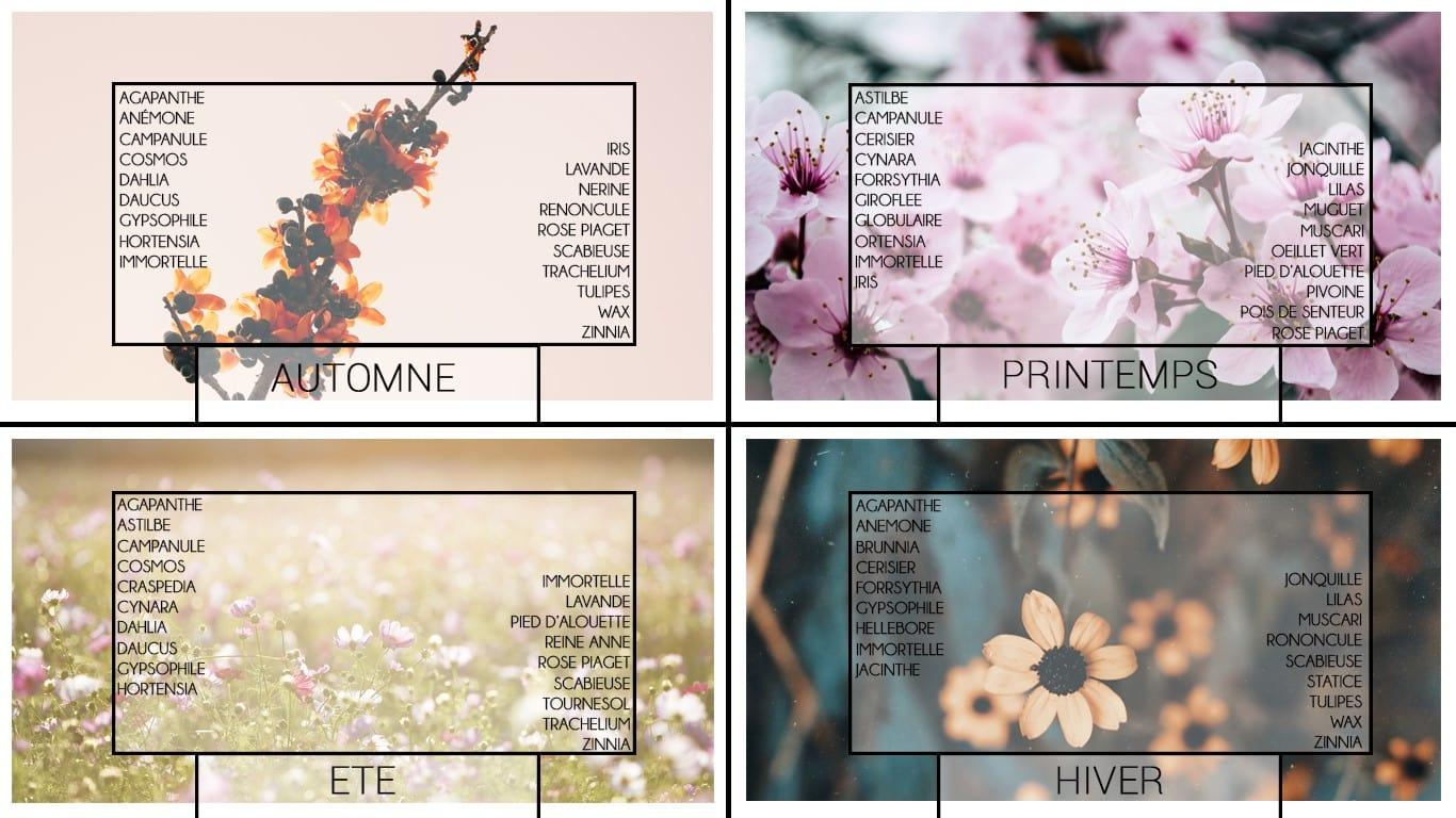 Calendrier des fleurs par saison