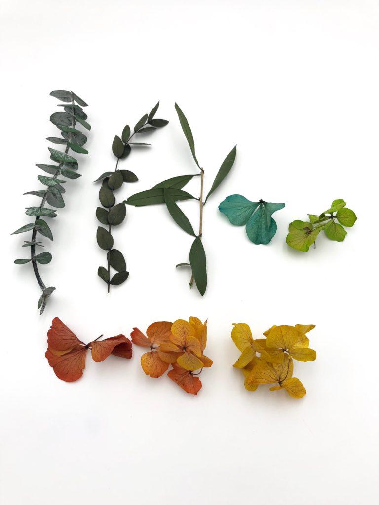 La fleur stabilisée : feuillages et hortensias stabilisés - Les Fleurs Dupont